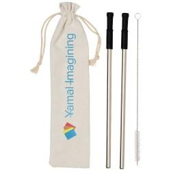 Lena reusable stainless straw set