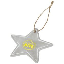 Seasonal star ornament