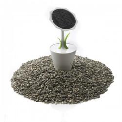 Solar Sunflower 2.500mAh, white